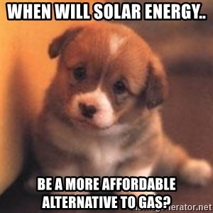cute puppy - WHEN will solar energy.. be a more affordable alternative to gas?