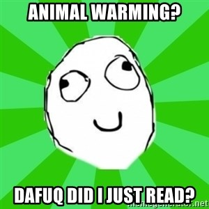 dafuq - ANIMAL WARMING? DAFUQ DID I JUST READ?