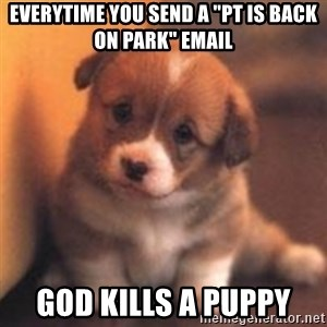 "cute puppy - everytime you send a ""pt is back on park"" email god kills a puppy"