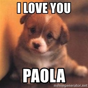 cute puppy - I love you Paola