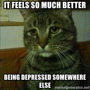 Depressed cat 2 - It feels so much better Being depressed Somewhere else