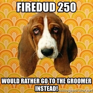 SAD DOG - Firedud 250 would rather go to the groomer instead!