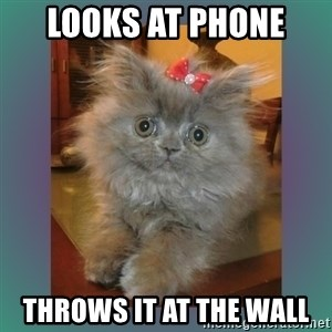 cute cat - looks at phone  throws it at the wall