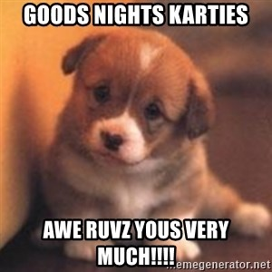 cute puppy - Goods nights karties Awe ruvz yous very much!!!!