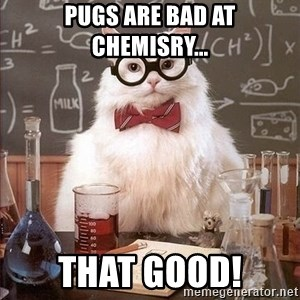 Chemistry Cat - pugs are bad at chemisry... THAT GOOD!
