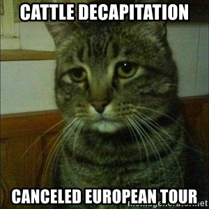 Depressed cat 2 - CATTLE DECAPITATION CANCELED EUROPEAN TOUR