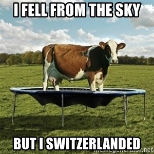 Unimpressionable Cow - i fell from the sky but i switzerlanded