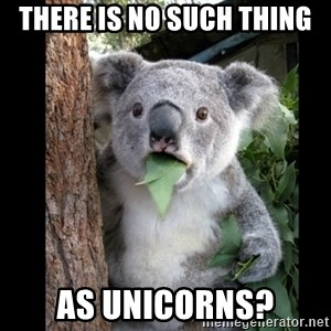 Koala can't believe it - there is no such thing as unicorns?
