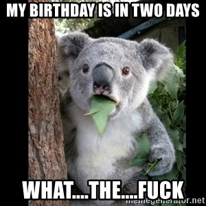 Koala can't believe it - my birthday is in two days WHAT....THE....FUCK