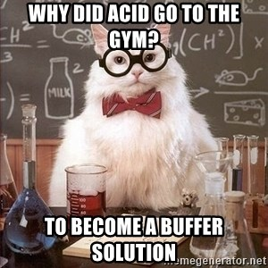 Chemistry Cat - Why did acid go to the gym? to become a buffer solution