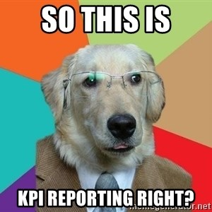 Business Dog - SO THIS IS KPI REPORTING RIGHT?