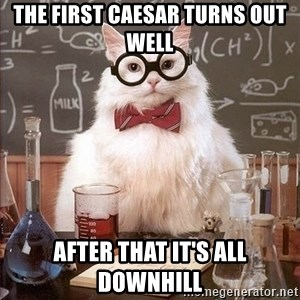 Chemistry Cat - THE FIRST CAESAR TURNS OUT WELL  AFTER THAT IT'S ALL DOWNHILL