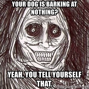 Shadowlurker - Your dog is barking at nothing? Yeah, you tell yourself that.
