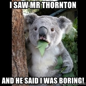 Koala can't believe it - I saw Mr Thornton And he said I was boring!