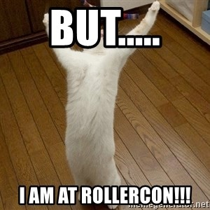 praise the lord cat - BUT..... I AM AT ROLLERCON!!!