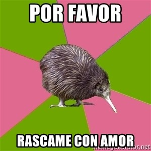 Choir Kiwi - Por favor  Rascame con Amor