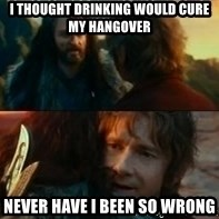 Never Have I Been So Wrong - I thought drinking would cure my hangover Never have I been so wrong