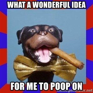 Triumph the Insult Comic Dog - what a wonderful idea for me to poop on