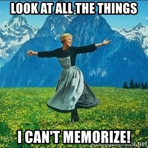 Look at all the things - Look at all the things I can't memorize!