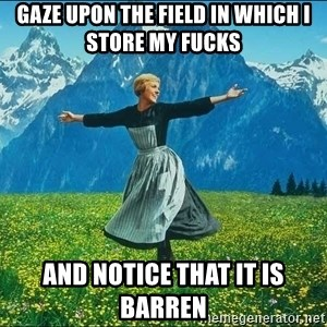 Look at all the things - Gaze upon the field in which I store my fucks and notice that it is barren