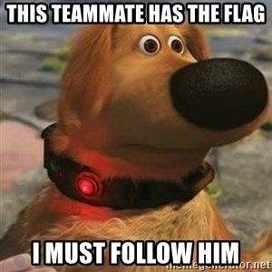 Up Dog - This teammate has the flag I must follow him