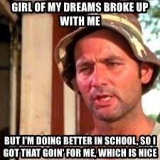 Bill Murray Caddyshack - Girl of my dreams broke up with me But I'm doing better in school, so I got that goin' for me, which is nice