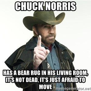 chuck norris cowboy hat - chuck norris has a bear rug in his living room,     it's not dead, it's just afraid to move