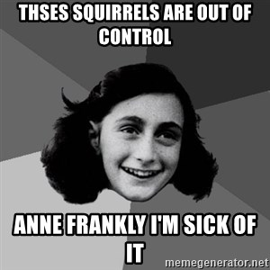 Anne Frank Lol - Thses squirrels are out of control Anne Frankly I'm sick of it