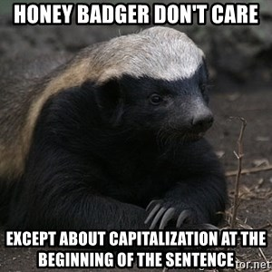 Honey Badger - honey badger don't care except about capitalization at the beginning of the sentence