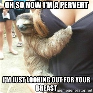 Perverted Sloth - oh so now i'm a pervert i'm just looking out for your breast