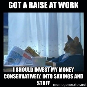 1% cat - Got a raise at work I should invest my money conservatively, into savings and stuff