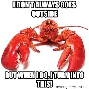 Unable to Relax and Have Fun Lobster - I don't always goes outside  But when I do, I turn into this!