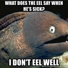 Bad Joke Eel v2.0 - What does the eel say when he's sick? I don't EEL well