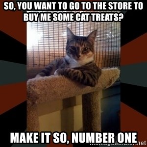 The Most Interesting Cat in the World - So, you want to go to the store to buy me some cat treats? make it so, number one