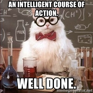 Chemistry Cat - An intelligent course of action. Well done.
