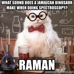 Chemistry Cat - What sound does a Jamaican dinosaur make when doing spectroscopy? RAMAN