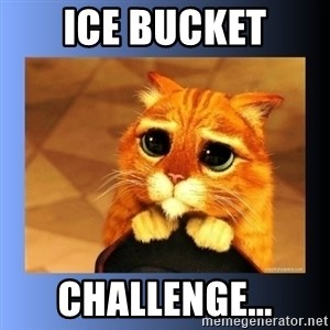 puss in boots eyes 2 - Ice Bucket Challenge...