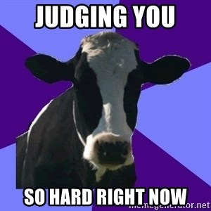 Coworker Cow - Judging You  So hard right now