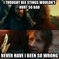 Never Have I Been So Wrong - I thought bee stings wouldn't hurt so bad Never have I been so wrong