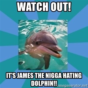 Dyscalculic Dolphin - WATCH OUT! IT'S JAMES THE NIGGA HATING DOLPHIN!!