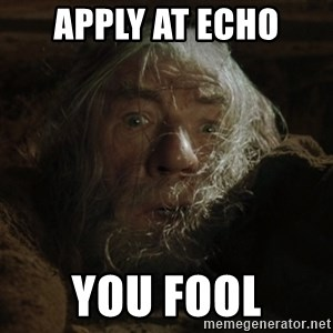 gandalf run you fools closeup - APPLY AT ECHO YOU FOOL