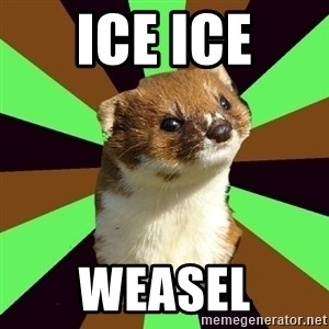 Witchcraft Weasel - ICE ICE WEASEL
