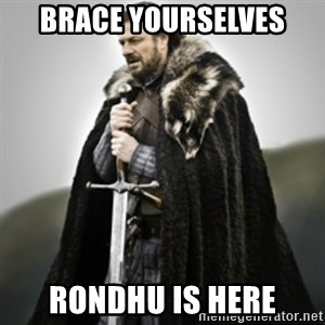 Brace yourselves. - BRACE YOURSELVES RONDHU IS HERE