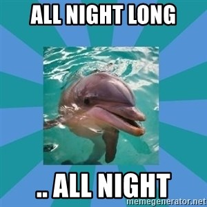 Dyscalculic Dolphin - all night long .. all night