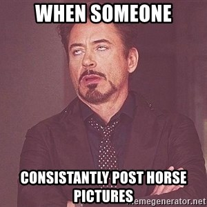 Robert Downey Jr rolls eyes - when someone consistantly post horse pictures