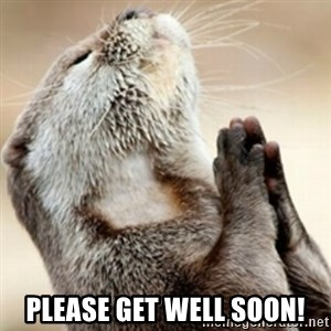 Praying Otter -  Please get well soon!