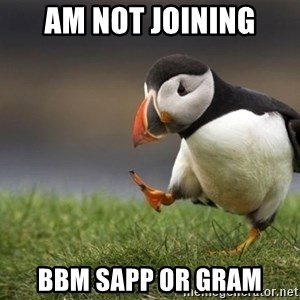 Unpopular Opinion Puffin - am not joining bbm sapp or gram