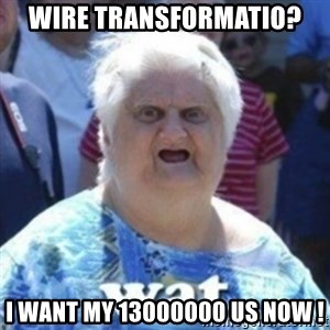 Fat Woman Wat - WIRE TRANSFORMATIO? i WANT MY 13000000 US NOW !
