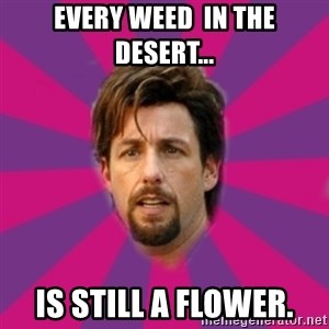 zohan - Every weed  in the desert... is still a flower.