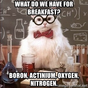 Chemistry Cat - What do we have for breakfast? Boron, Actinium, Oxygen, Nitrogen.